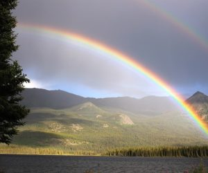 #MondayMusings : Of sunshine and rain
